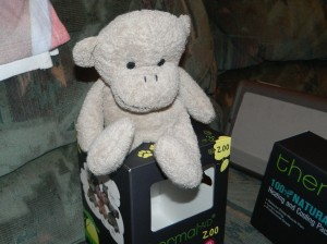 Monkey product pic