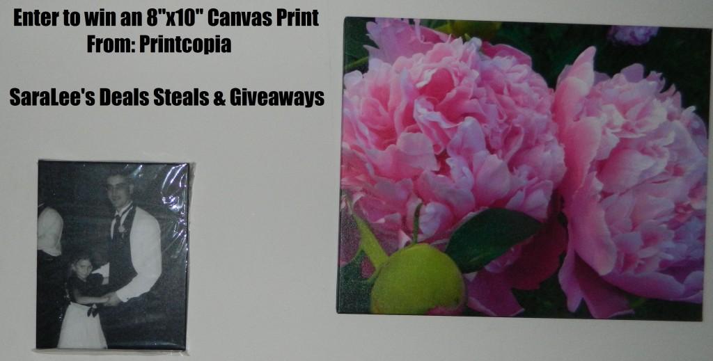 Printcopia giveaway