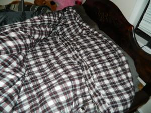 Inside the sleeping bag