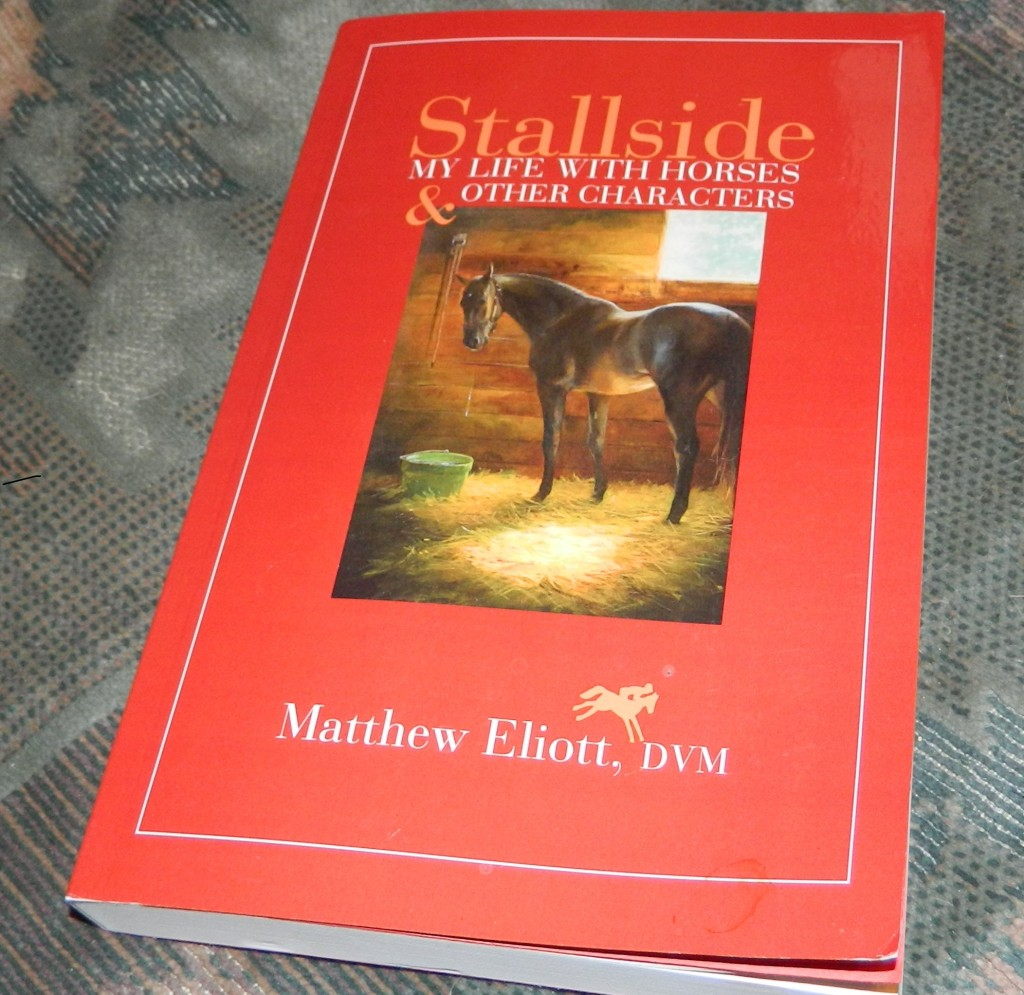 Stallside: My Life with Horses and Other Characters Paperback