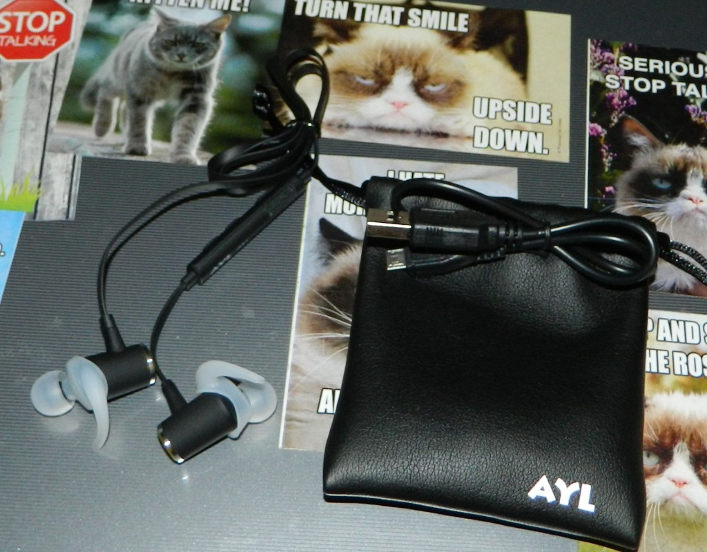 Bluetooth Headphones Wireless Sports In-Ear with Built-In Mic by AYL