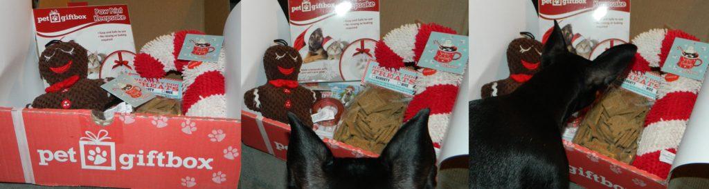Pet Gift Box